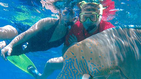 SnorkelingGreatBarrierReef
