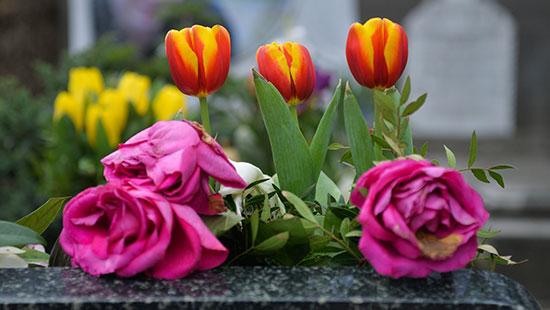 FlowersPhilippines