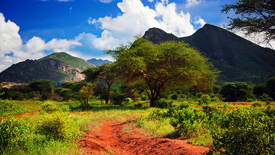 LandscapeAfricaKenya