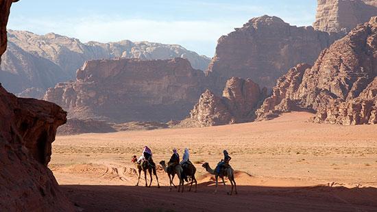 jordan wadirum camels