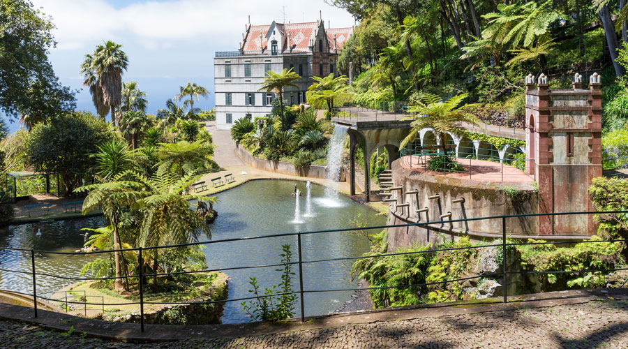 Travel to Madeira Island