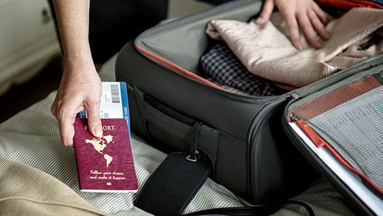 passportpack suitcase