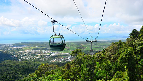 rainforest cable ride