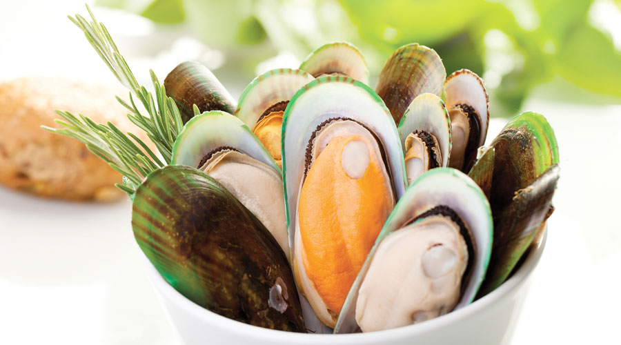 mussels in NZ