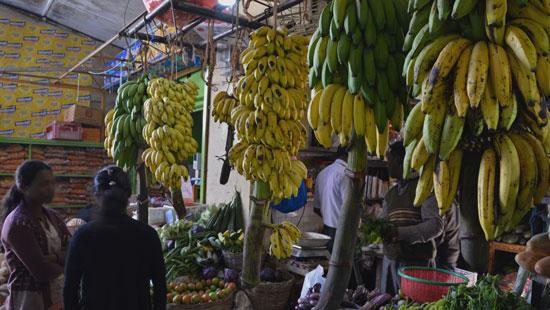 8Market Sri Lanka
