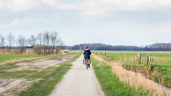 Biking in Netherlands