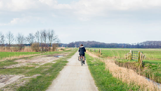Biking in Netherlands