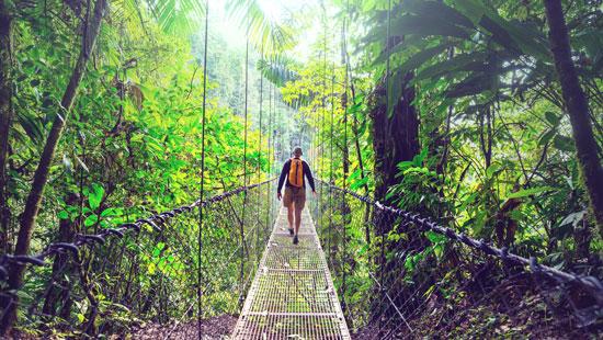 hanging bridge costa rica