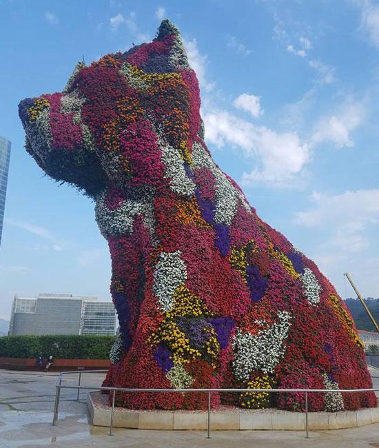 Flower Puppy