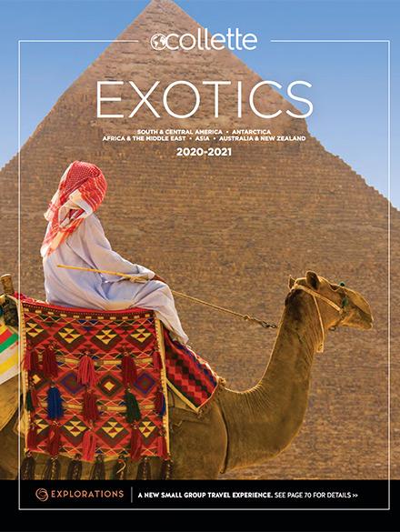 2020 2021 exotics US lg