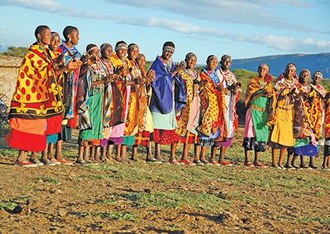 Masai CVO 5328 480x340