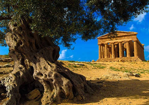 Agrigento Temple - Collette