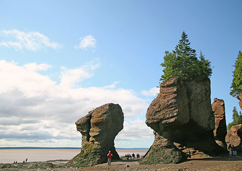 HopewellRocks_9043951_FotoliaRF_2434_480x340