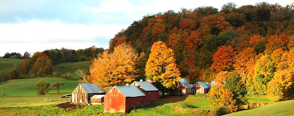 Foliage Barn - Vermont - Collette
