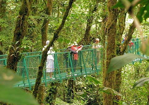 Hanging Bridge - Costa Rica - Collette