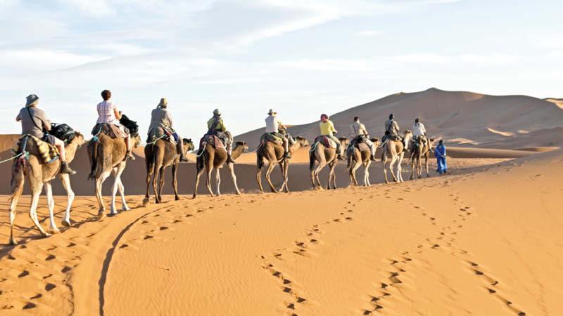 Africa Tours Sahara