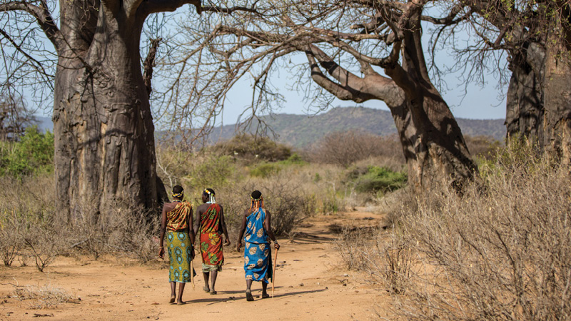 Tanzania md3