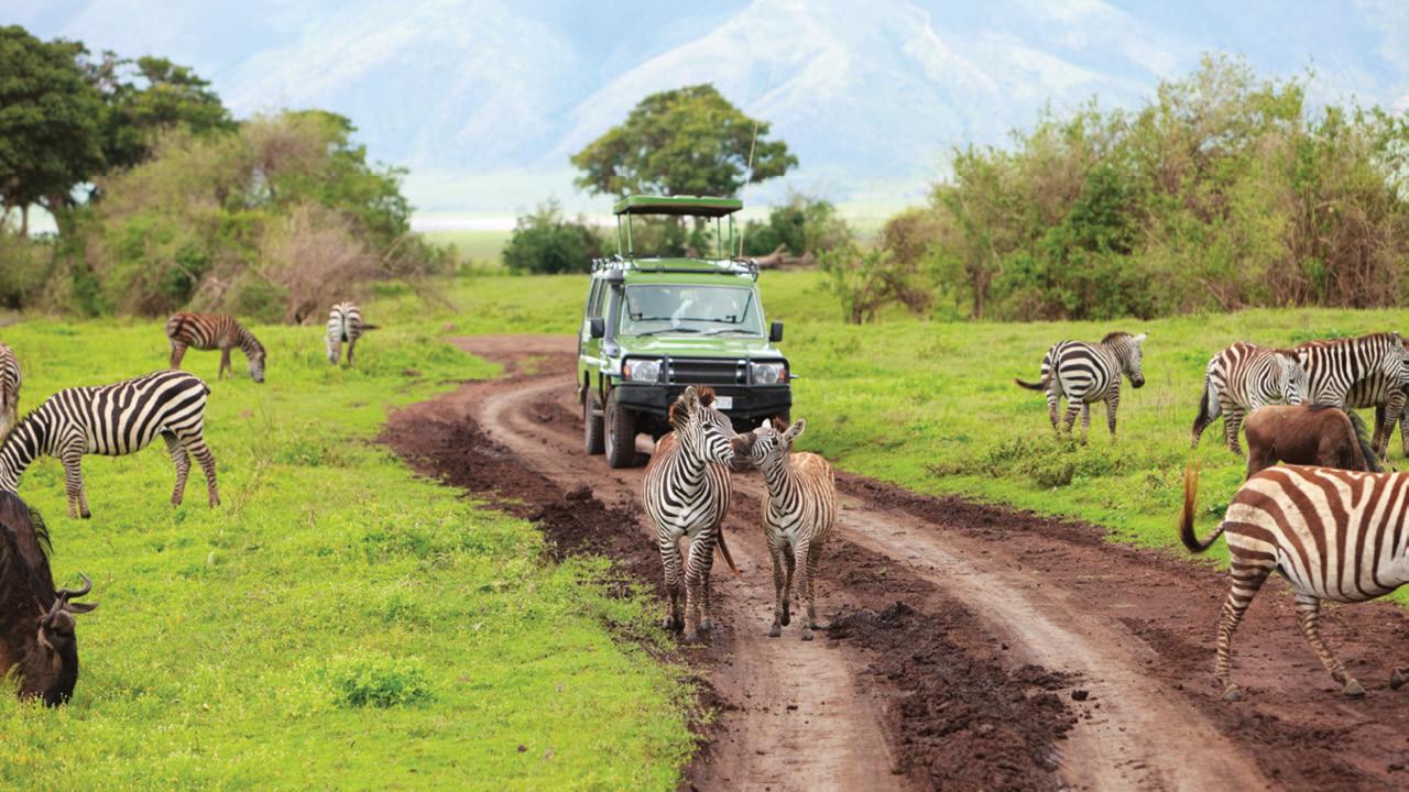 Tanzania ms1