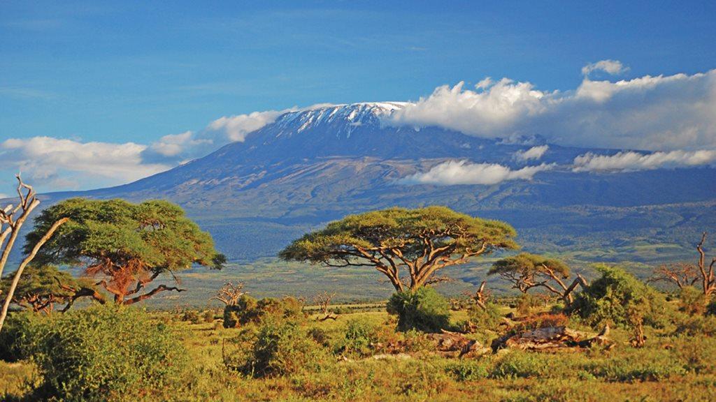 Tanzania ms2