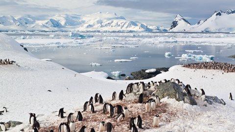 Antarctica ms3