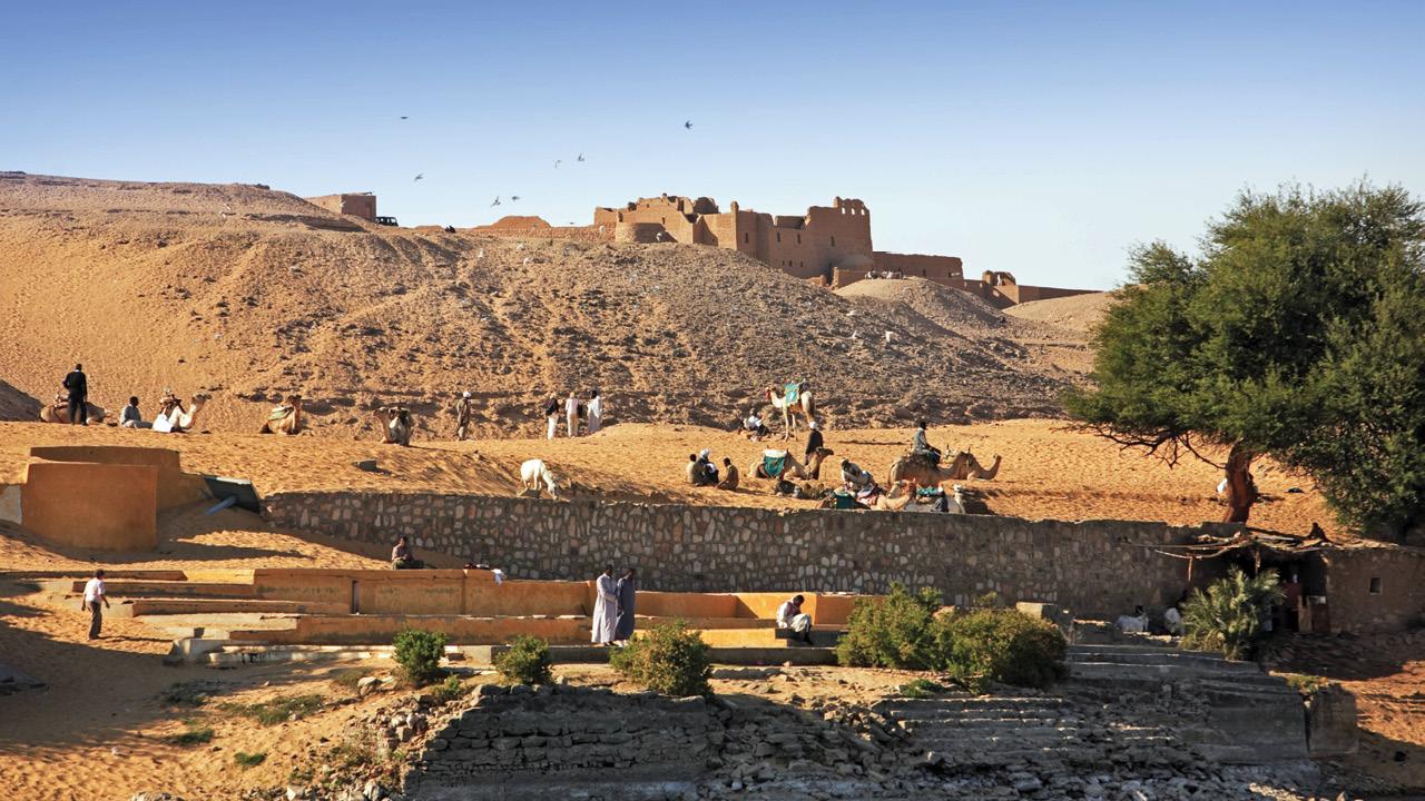 Egypt ms2
