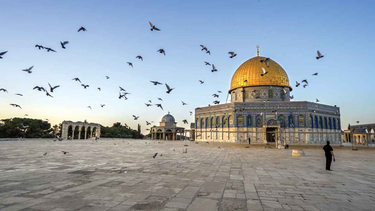 Israel ms1