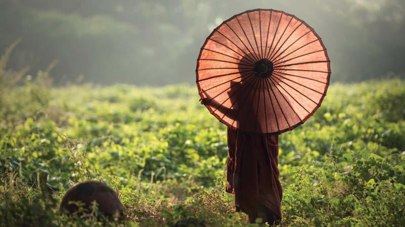 Myanmar md3