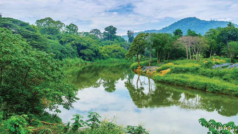 Sri Lanka md2
