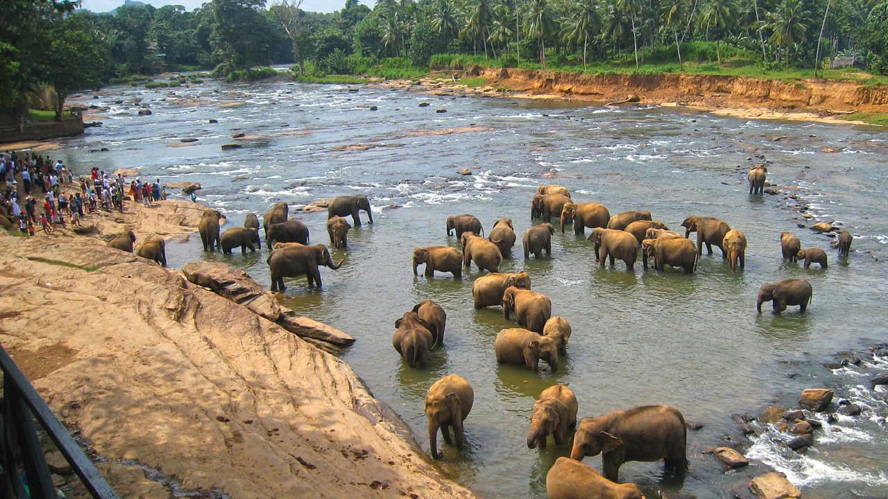 Sri Lanka ms2
