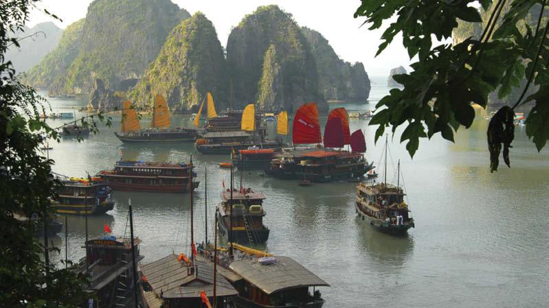Vietnam md1