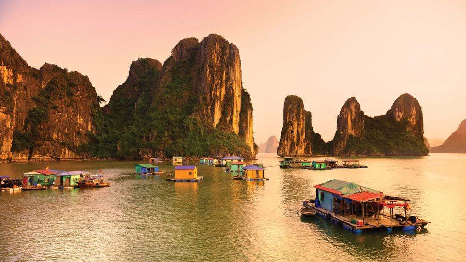 Vietnam new ms1
