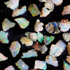 natl opal collection