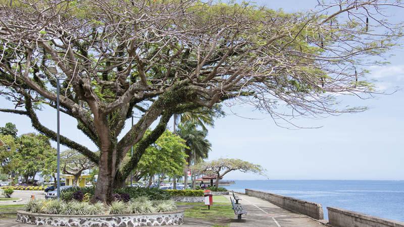 Fiji md2
