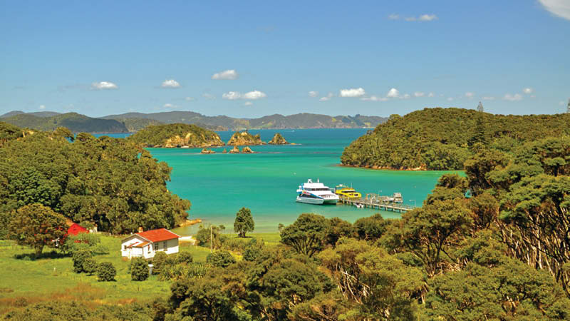 New Zealand md3