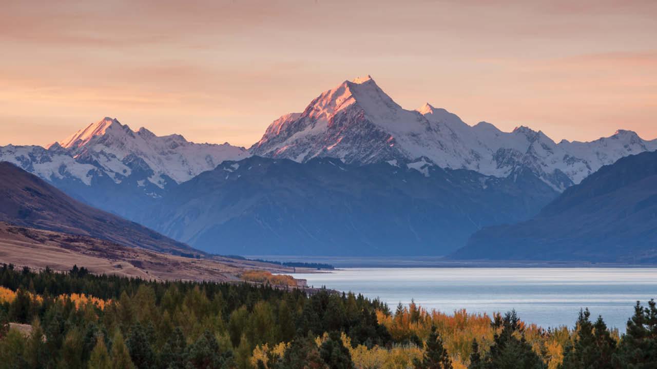 New Zealand ms2