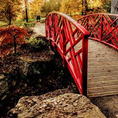 batsford arboretum uk  AdobeStock 127313133