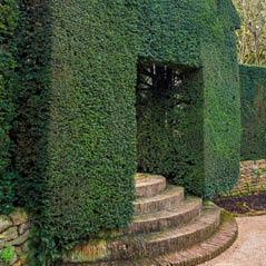 hidcote manor garden ukAdobeStock 127066679