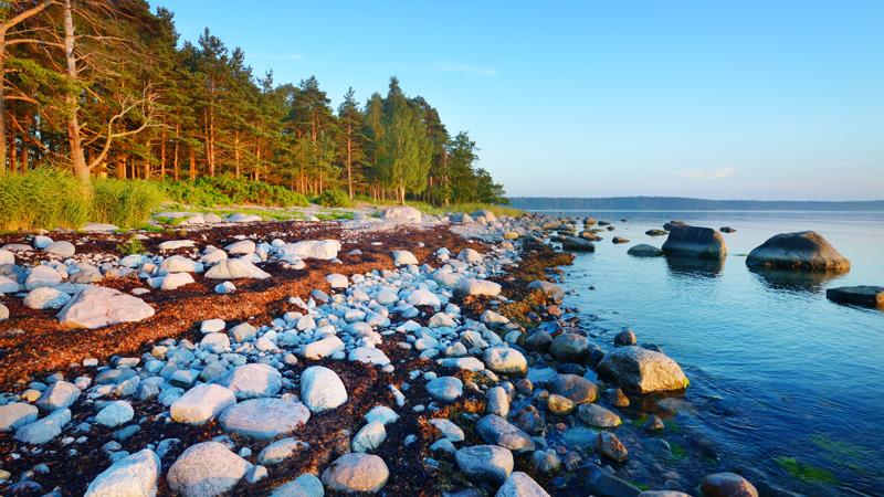 expert 1 baltic sea
