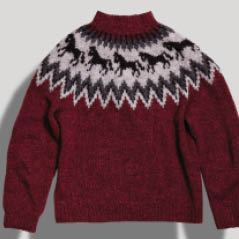 iceland sweater AdobeStock 129306458