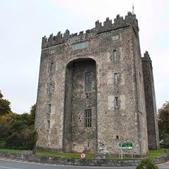 Bunratty Castle CVO 18352