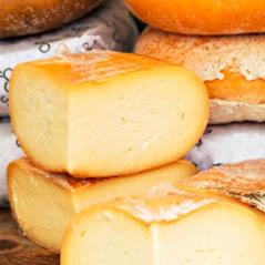 Cheese Amsterdam 101647874 Fotolia
