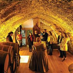 Waterford Museum of Treasures Medieval Museum