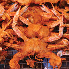 crispy crab   AdobeStock 157401543