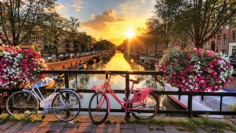 Netherlands md3