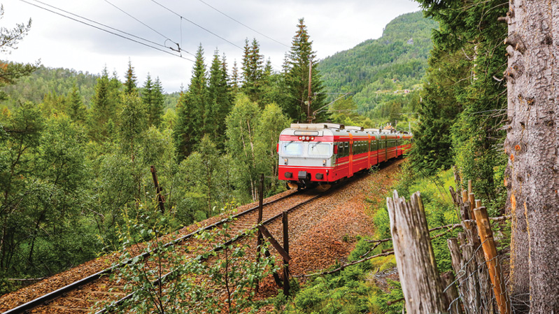 Norway md4