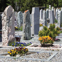 cementary AdobeStock 66084724