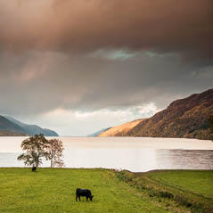 Great Glen scotland inverness AdobeStock 168372919