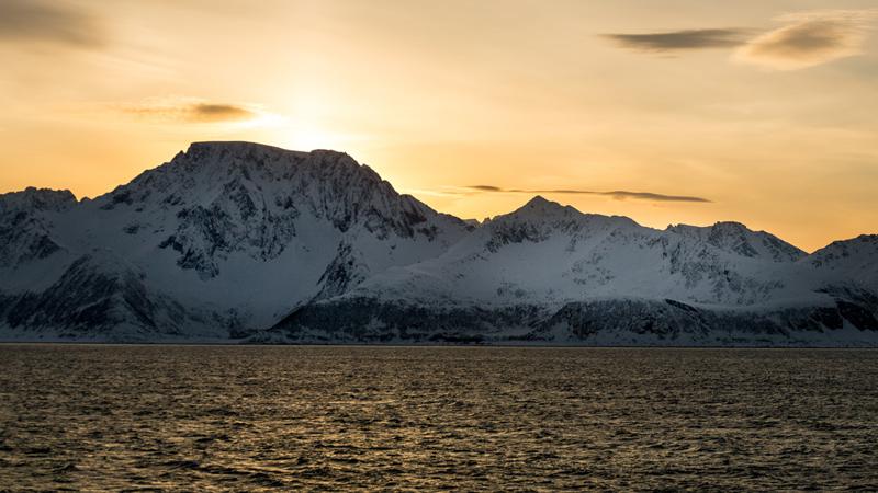 Greenland expert 2