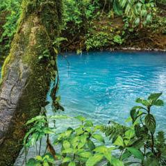 arenal river