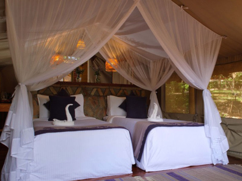 tented camp